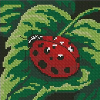 Изображение Божья коровка (Ladybug)