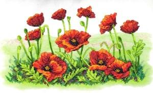 Изображение Маковое поле (Field of Poppies)