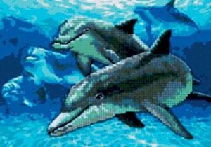 Изображение Глубоководные дельфины (Deep Sea Dolphins)