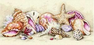 Изображение Морские сокровища (Seashell Treasures)