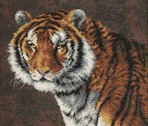 Изображение Тигр (Tiger)