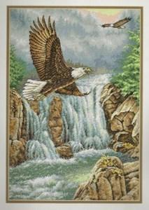 Изображение Царство орла (Eagle s Majesty)