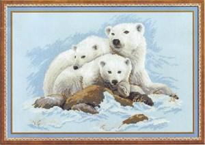 Изображение Белые медведи