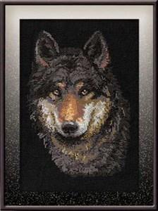 Изображение Глаза волка