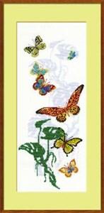 Изображение Экзотические бабочки