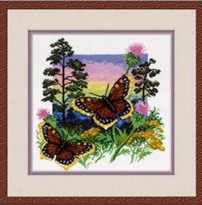 Изображение Бабочки Шоколадница