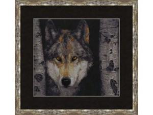 Изображение Волк