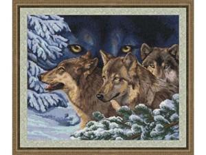 Изображение Волчий взгляд