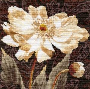 Изображение Белые цветы. В объятиях света