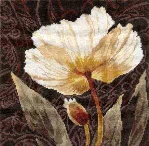 Изображение Белые цветы. Залитый светом