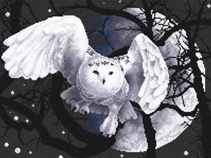 Изображение Белая сова