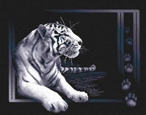 Изображение Белый тигр