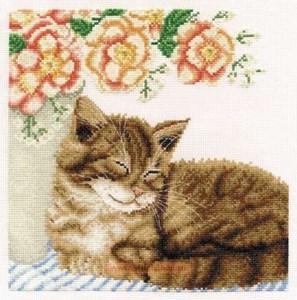 Изображение Котик с розами (Ginger With Roses)