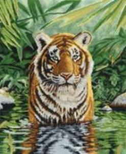 Изображение Тигриный бассейн (Tiger Pool)