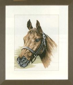 Изображение Голова лошади (Horse's Head)