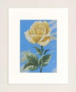 Изображение Желтая роза на голубом (Yellow Rose on Blue)