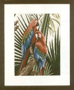Изображение Попугаи (Parrots)