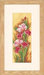 Изображение Ирисы (Irises)
