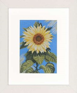 Изображение Подсолнух на голубом (Sunflower on Blue)