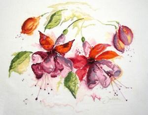 Изображение Фуксия в акварели (Fucsia in Watercolour)