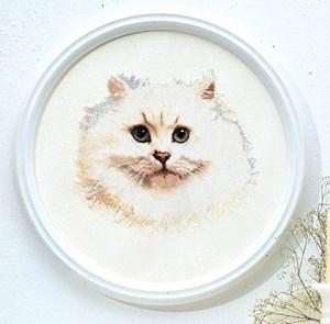Изображение Белый кот