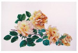 Изображение Роза мира (Peace Rose)