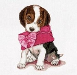 Изображение Щенячья любовь (Puppy Love)