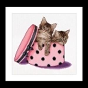 Изображение Котята-близнецы (Kitten twins)