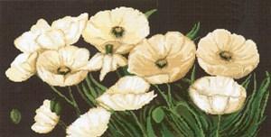 Изображение Белые маки на черном (Macii albi pe fon negru)