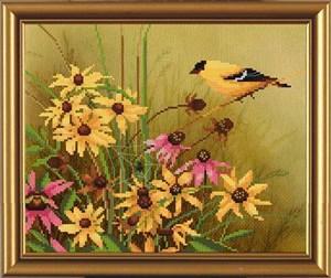 Изображение Птичий календарь. Лето
