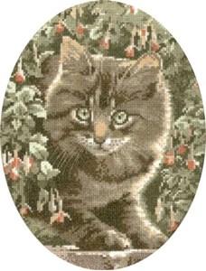 Изображение Полосатый котенок