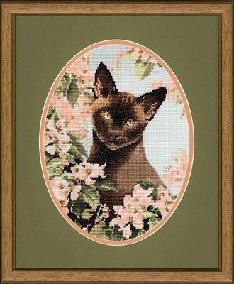 Изображение Бирманская Кошка (Burmese Cat)