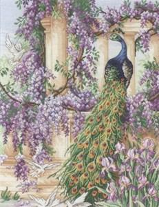 Изображение Павлин (The Peacock)