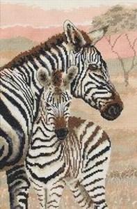 Изображение Семья зебр (Zebra Family)