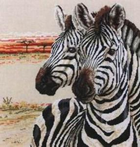 Изображение Зебры (Zebras)