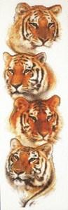 Изображение Тигриное взросление (Tiger Pack)