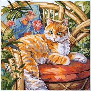 Изображение Кот на солнце (Cat in the Sun)