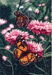 Изображение Бабочки