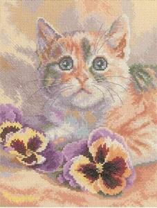 Изображение Кот с анютиными глазками
