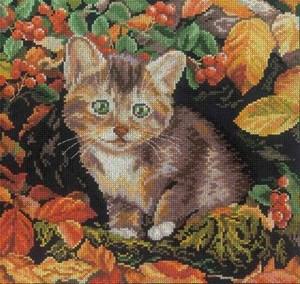Изображение Кот на черном
