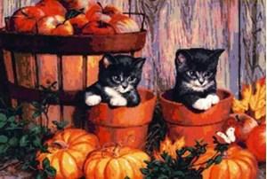 Изображение Котята на хеллоуин