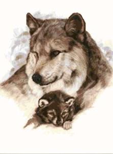 Изображение Полярные волки
