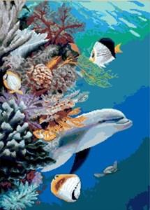 Изображение Морская жизнь