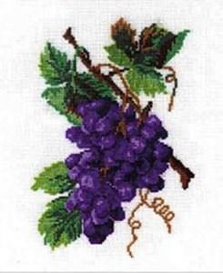 Изображение Виноград