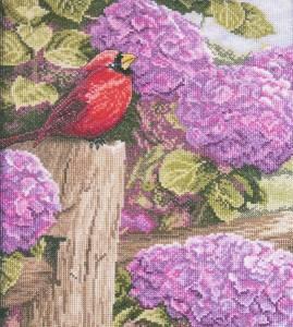 Изображение Багровое великолепие (Crimson Splendor)