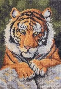 Изображение Бенгальский тигр (Benji Tiger)