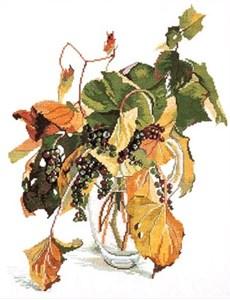 Изображение Дикий виноград (Wild Grapes)