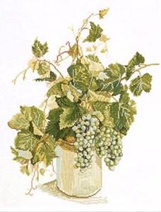 Изображение Зеленый виноград (Green Grapes)