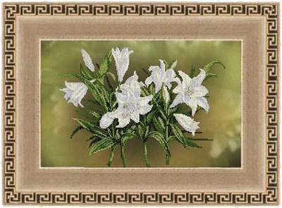 Изображение Цветочный пируэт