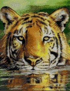 Изображение Водный тигр (Water Tiger)